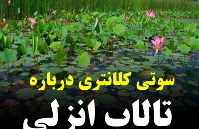 #سید_احمد_نبوی فعال محیط زیست : آقای دکتر لطفا ادبیاتتان را درست کنید