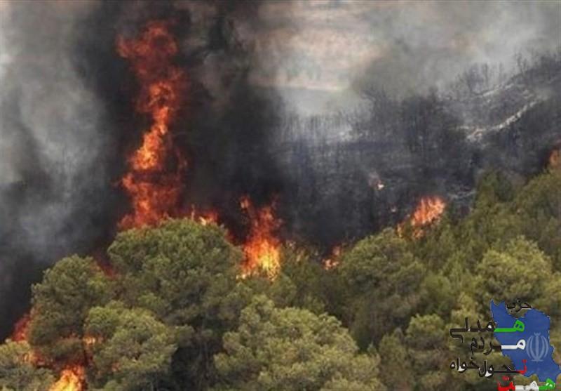 جنگل های منطقه حفاظت شده خائیز همچنان در آتش میسوزد .
