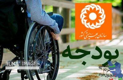 """"""" لایحه بودجه ۱۴۰۰ مشکلات معلولین را در حوزه اجتماعی حل نمی کند """""""